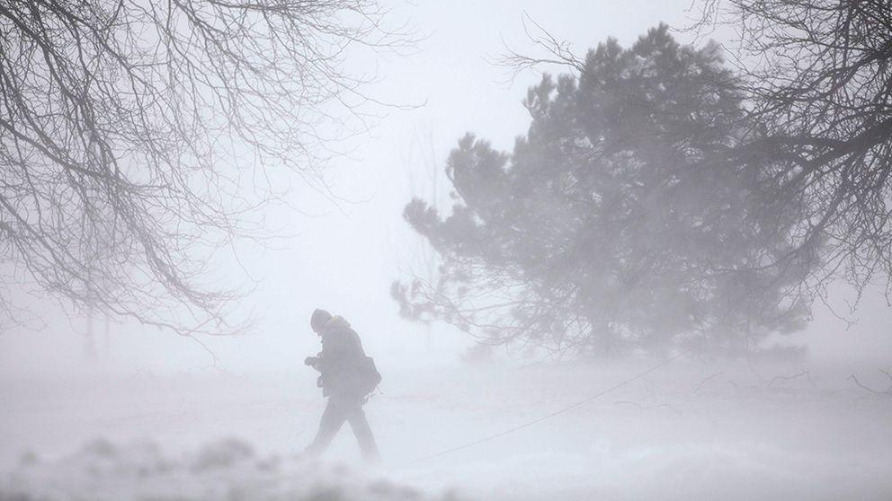 snöstorm